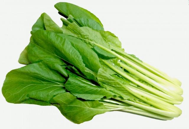 小松菜 栄養
