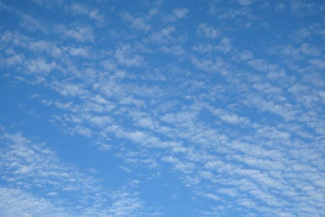 いわし雲 季節