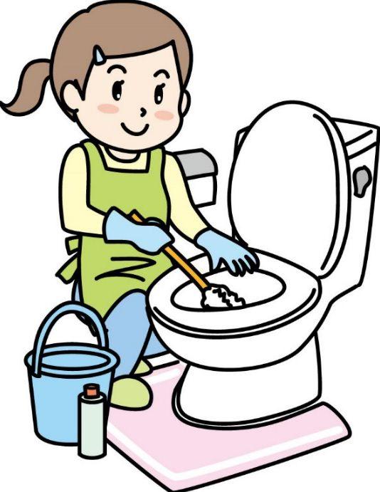 トイレ掃除 尿石