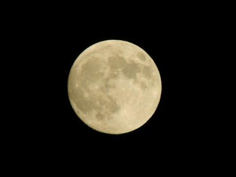 葉月 意味 由来