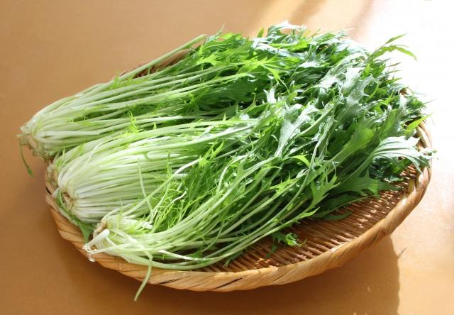 水菜 栄養 効果 効能