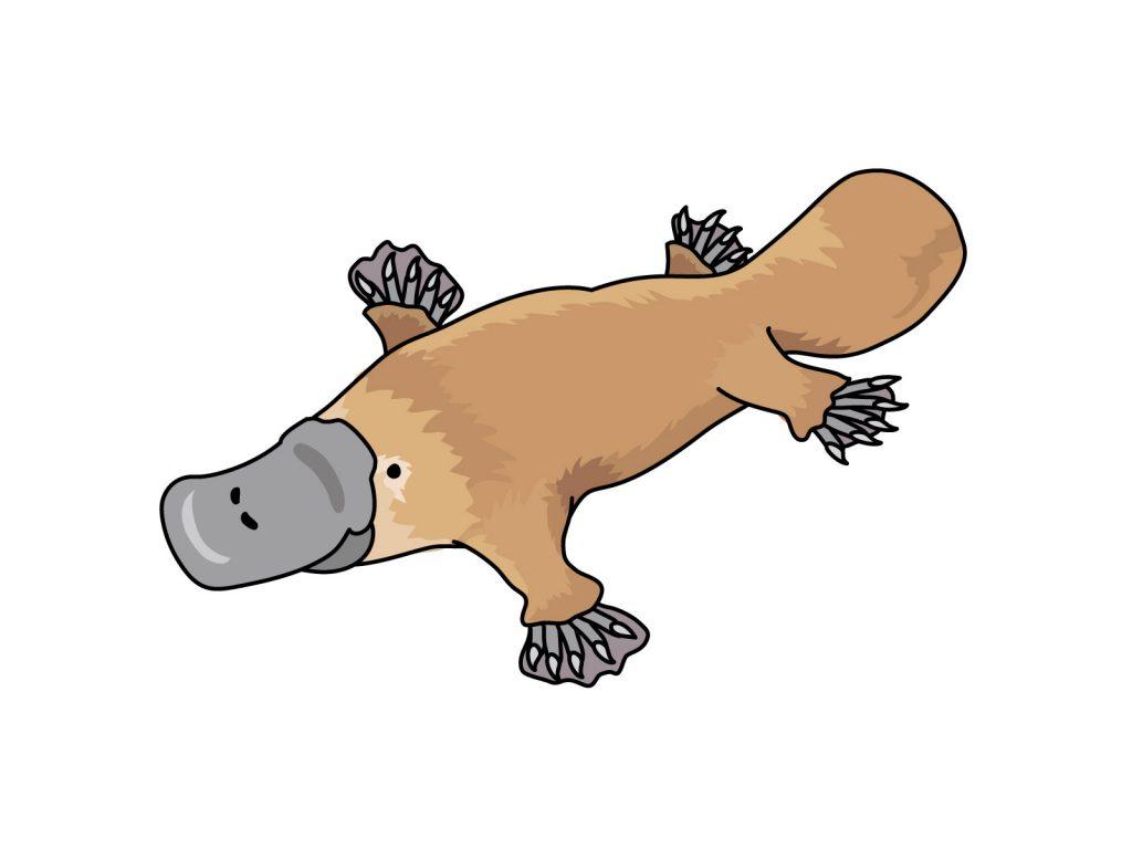 毒 哺乳類