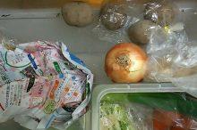 野菜 果物 低温障害