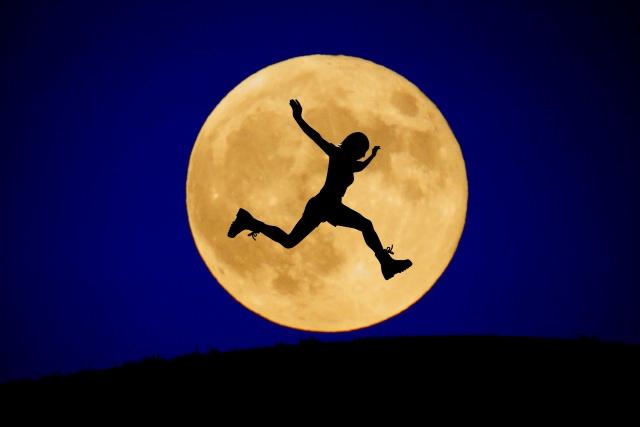新月 満月 違い